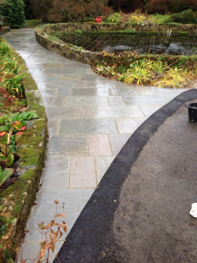 Kandla grey paving wet